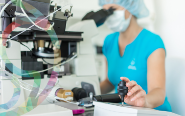 ICSI a PICSI. Die erfolgreichsten embryologischen Methoden zur Befruchtung der reifen Eizelle mit einer optimalen Samenzelle